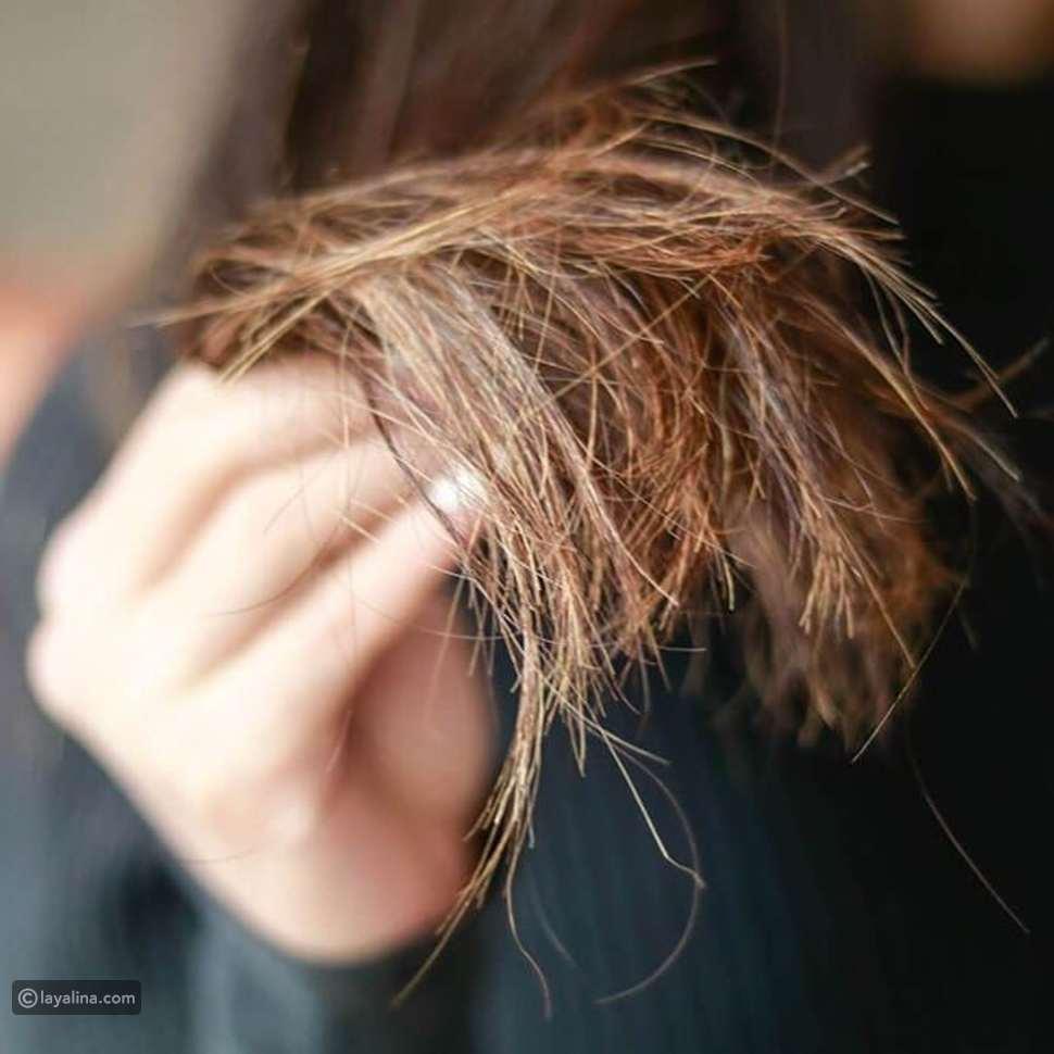 أفضل زيت لعلاج تقصف الشعر